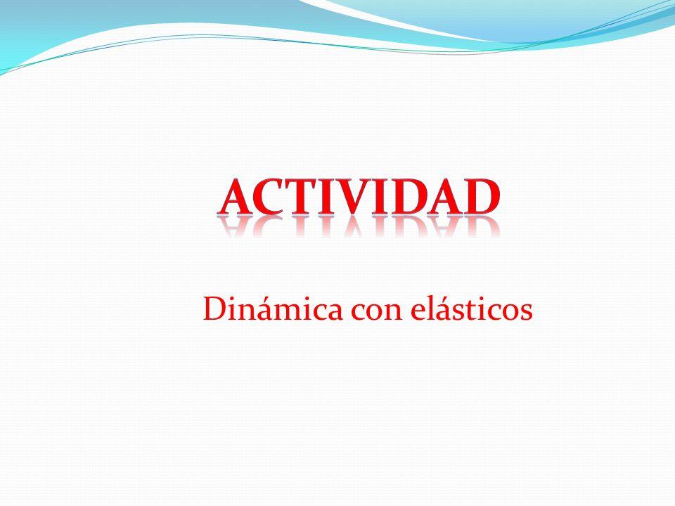 Actividad Dinámica con elásticos