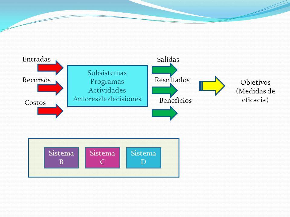 Subsistemas Programas. Actividades. Autores de decisiones. Entradas. Recursos. Costos. Salidas.