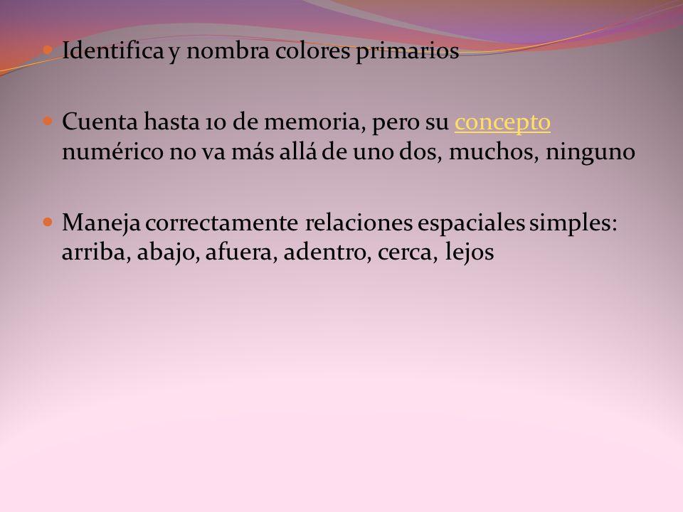 Identifica y nombra colores primarios