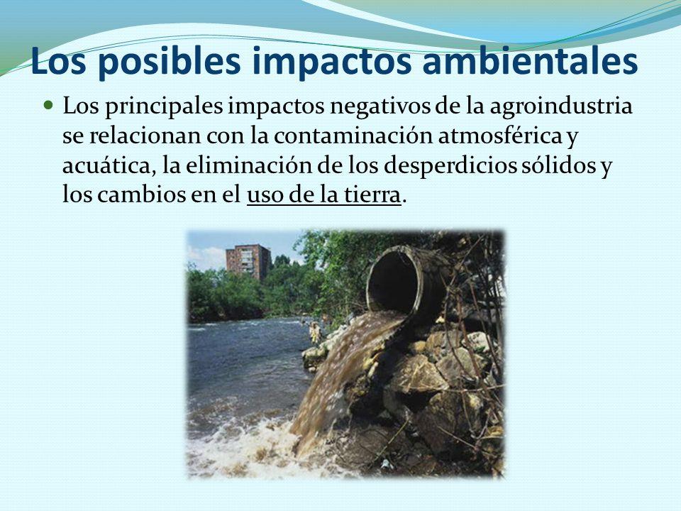 Los posibles impactos ambientales