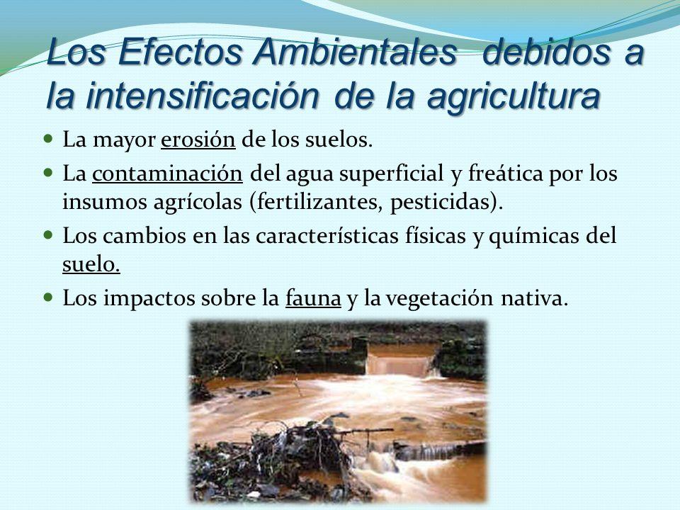 Los Efectos Ambientales debidos a la intensificación de la agricultura