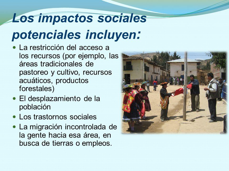 Los impactos sociales potenciales incluyen: