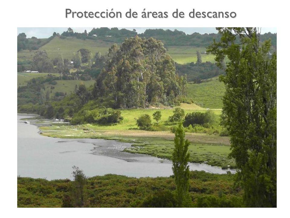 Protección de áreas de descanso