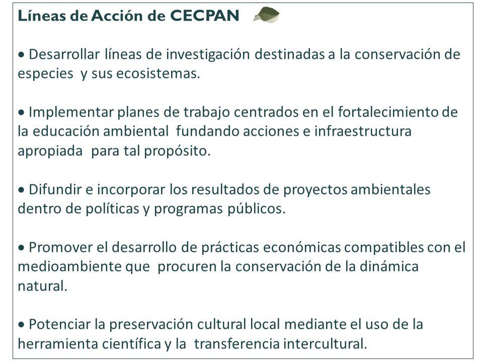 Líneas de Acción de CECPAN
