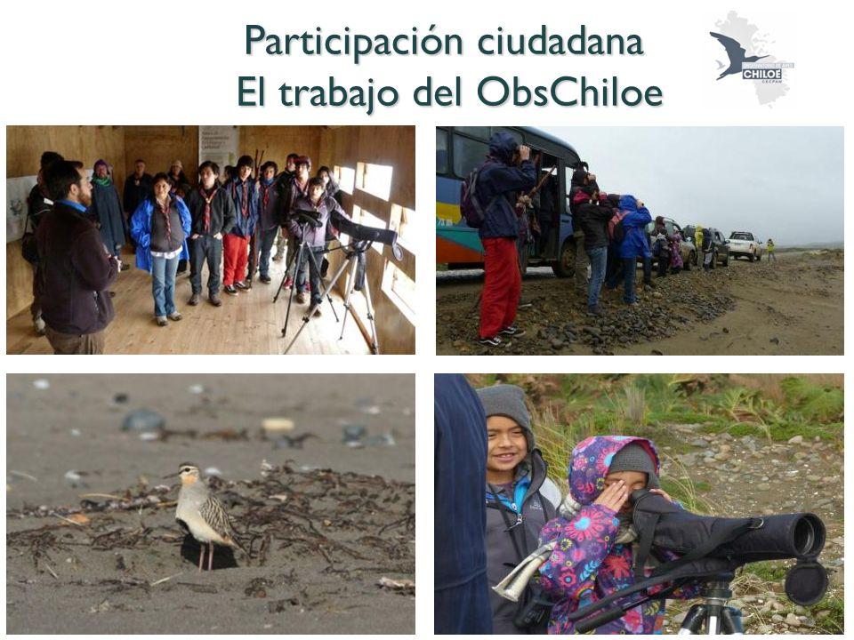 Participación ciudadana El trabajo del ObsChiloe