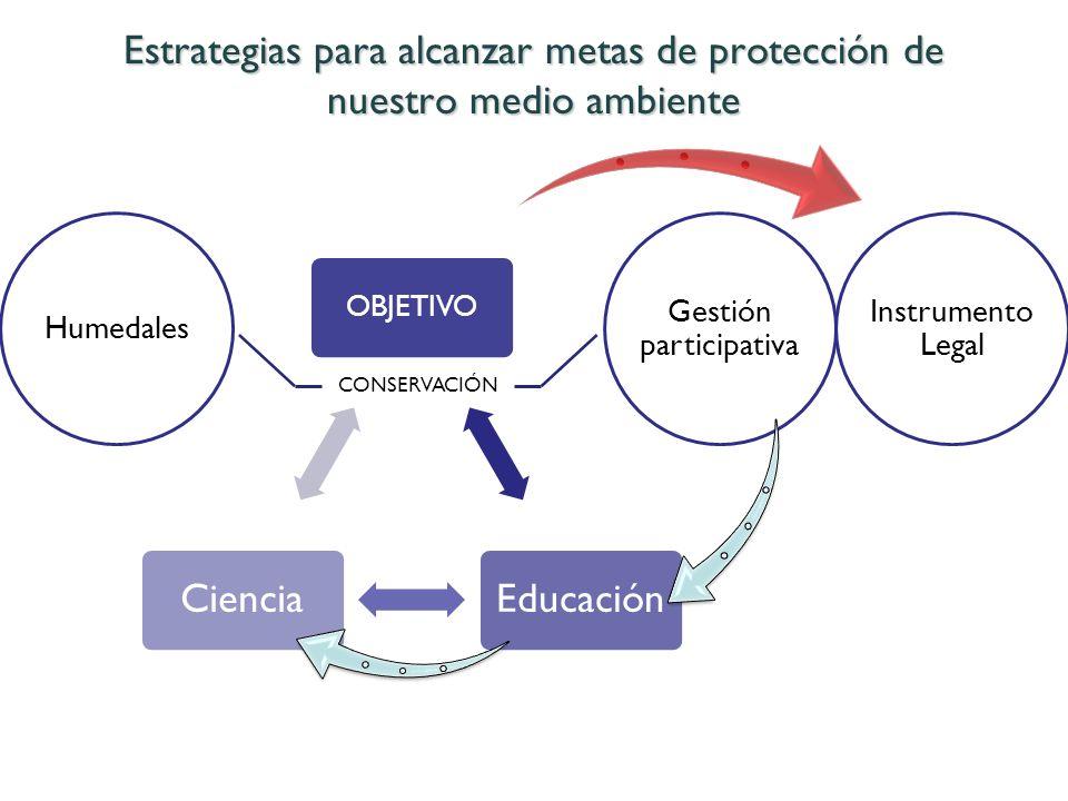 Gestión participativa