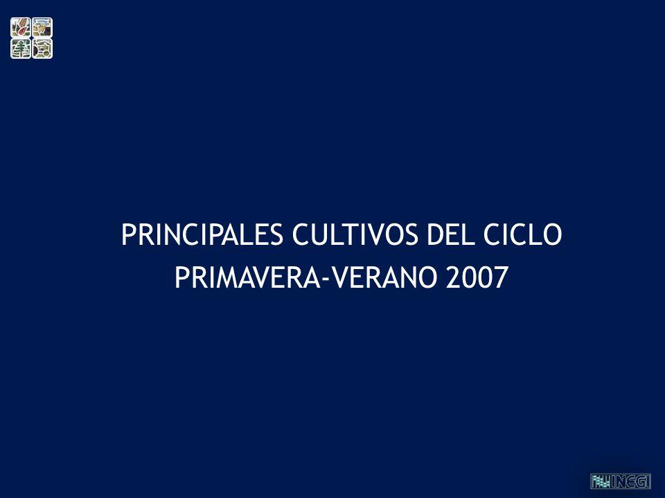 PRINCIPALES CULTIVOS DEL CICLO