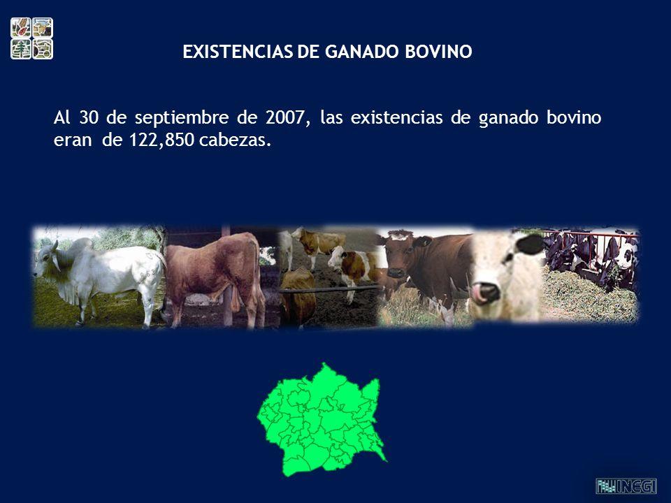 EXISTENCIAS DE GANADO BOVINO
