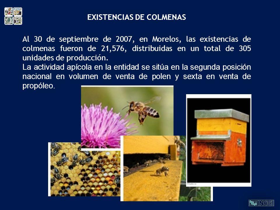 EXISTENCIAS DE COLMENAS
