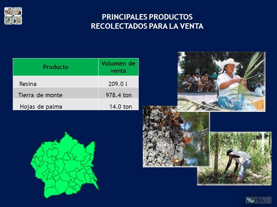 PRINCIPALES PRODUCTOS RECOLECTADOS PARA LA VENTA