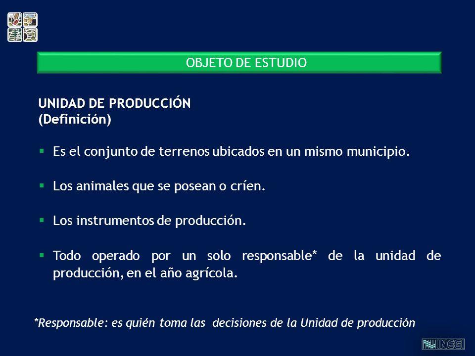 UNIDAD DE PRODUCCIÓN (Definición)