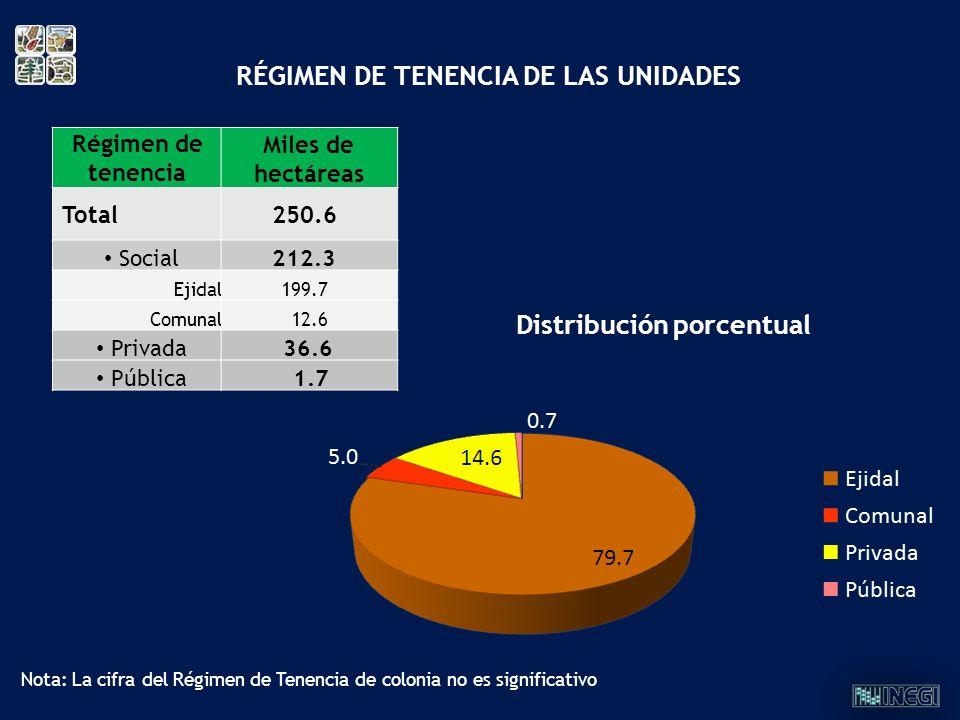 RÉGIMEN DE TENENCIA DE LAS UNIDADES Distribución porcentual
