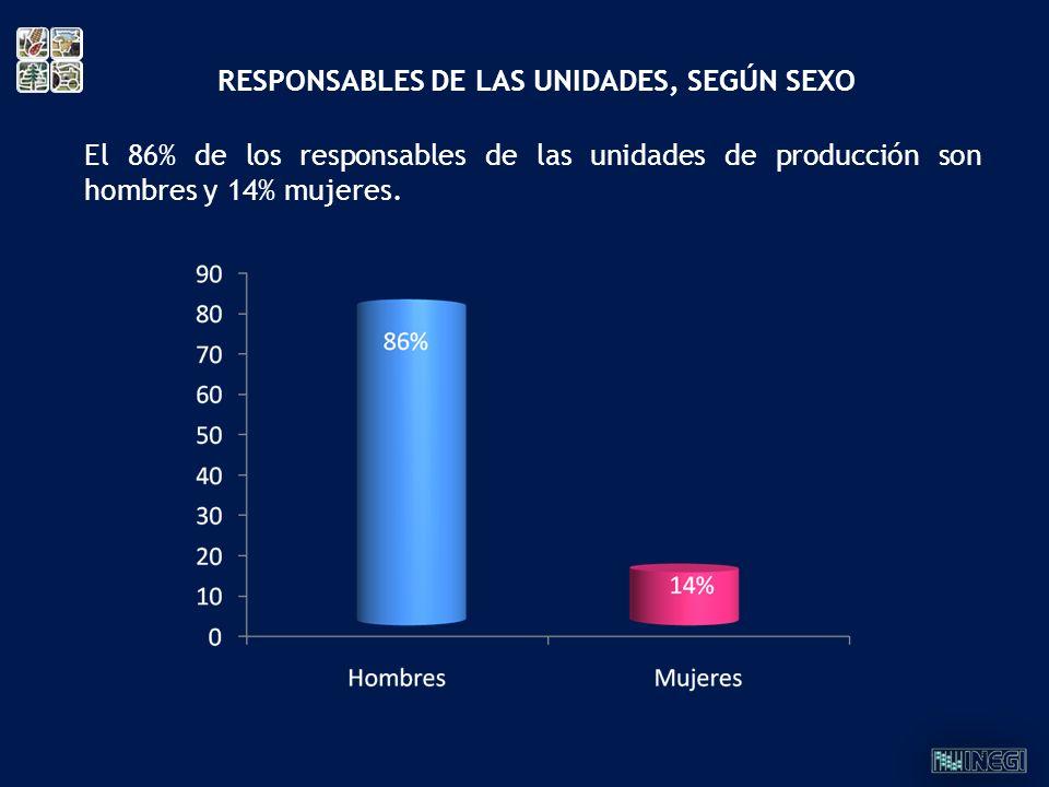 RESPONSABLES DE LAS UNIDADES, SEGÚN SEXO