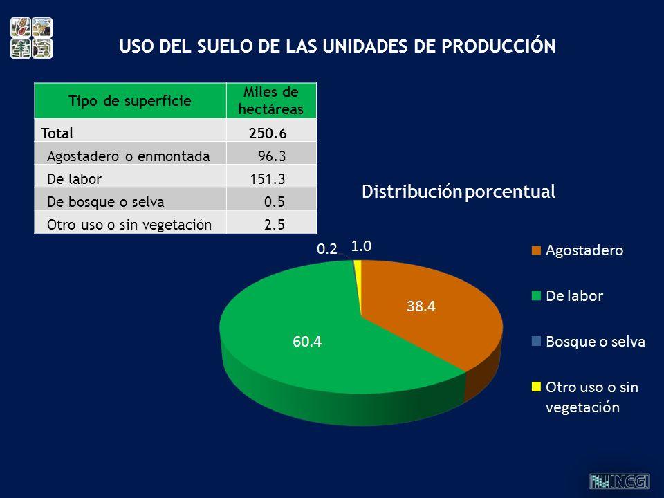 USO DEL SUELO DE LAS UNIDADES DE PRODUCCIÓN
