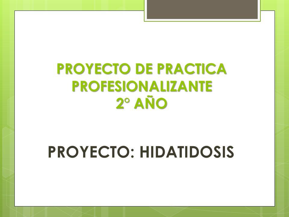 PROYECTO DE PRACTICA PROFESIONALIZANTE 2° AÑO