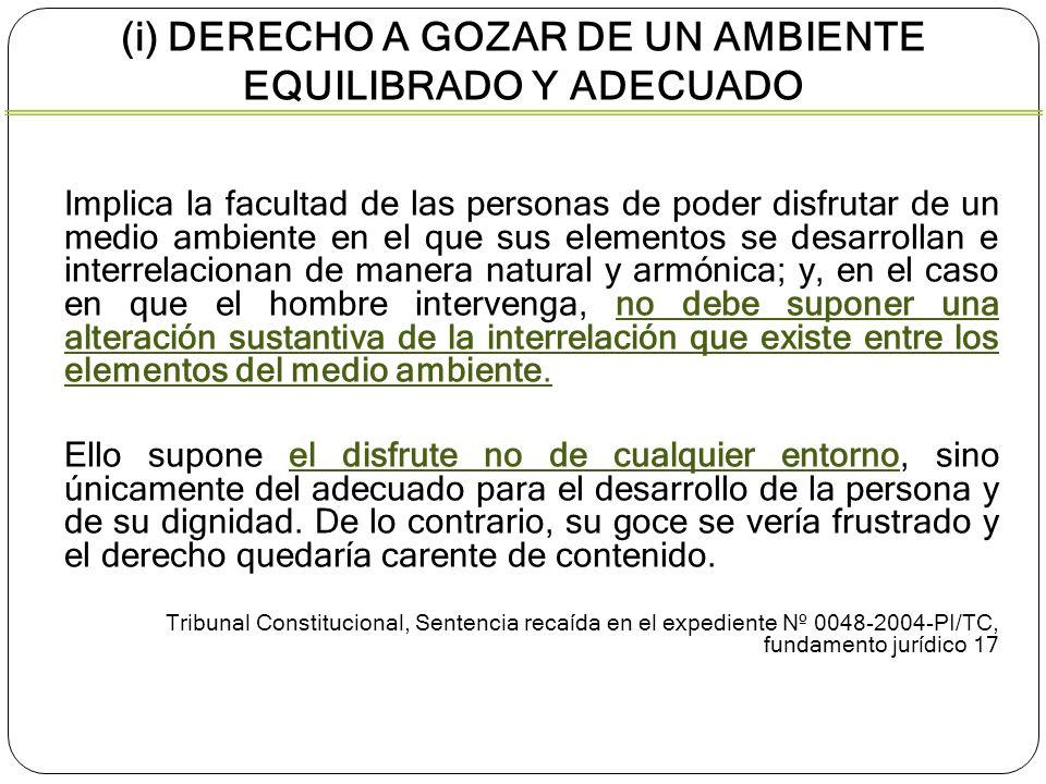 (i) DERECHO A GOZAR DE UN AMBIENTE EQUILIBRADO Y ADECUADO