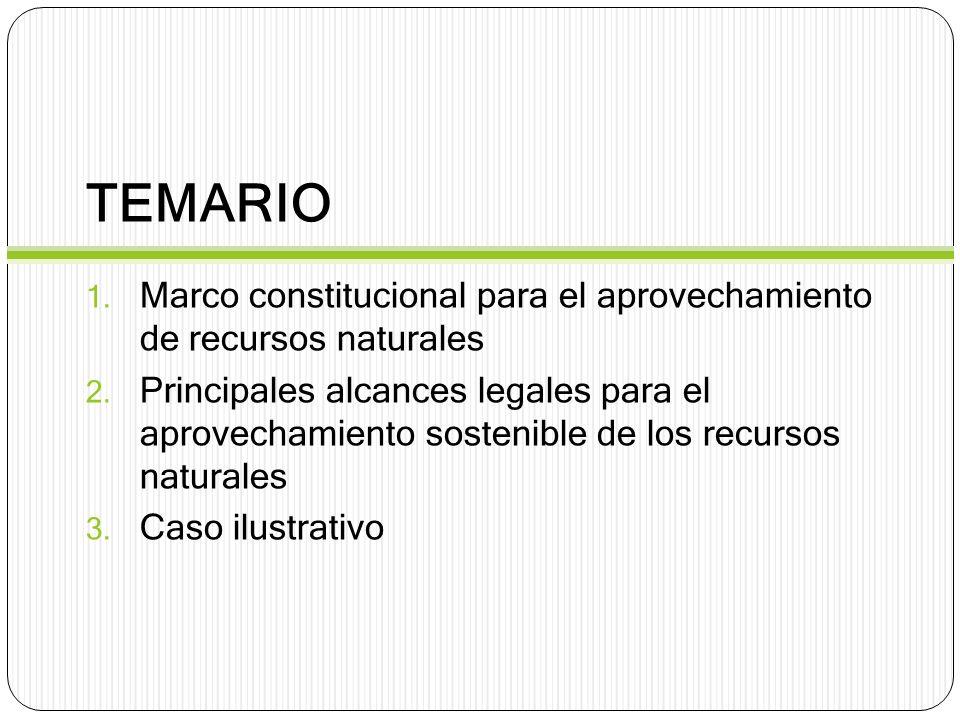 TEMARIO Marco constitucional para el aprovechamiento de recursos naturales.