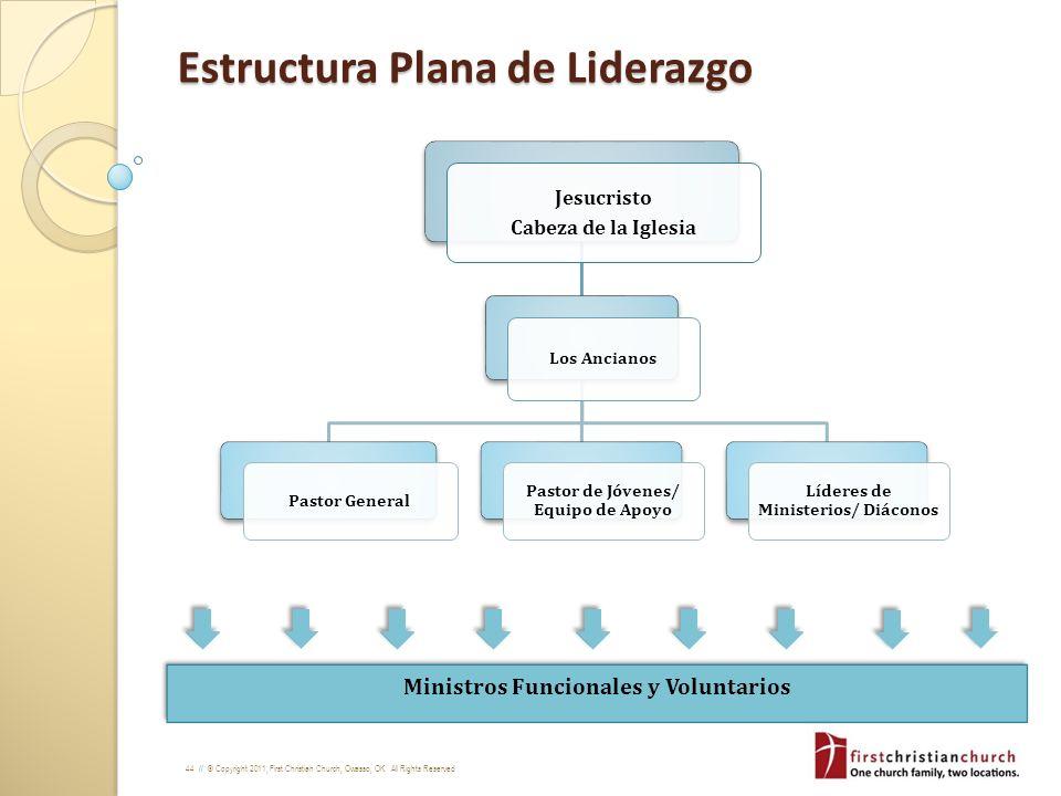Estructura Plana de Liderazgo