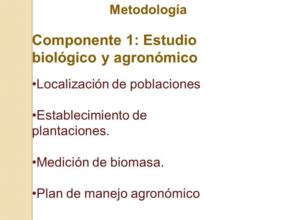 Componente 1: Estudio biológico y agronómico