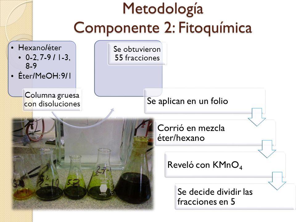 Metodología Componente 2: Fitoquímica