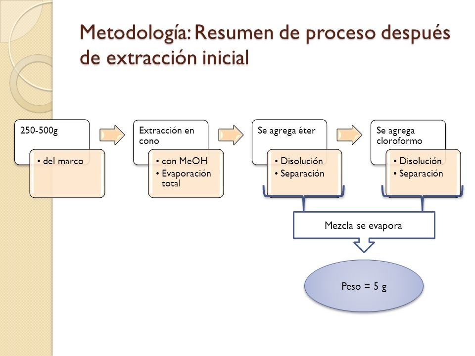 Metodología: Resumen de proceso después de extracción inicial