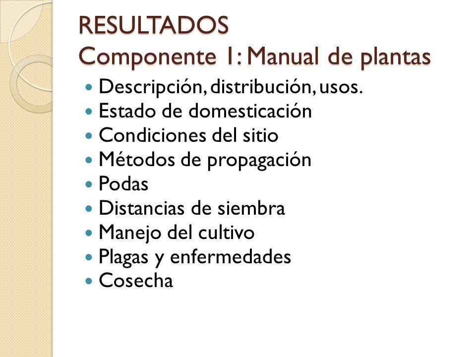 RESULTADOS Componente 1: Manual de plantas
