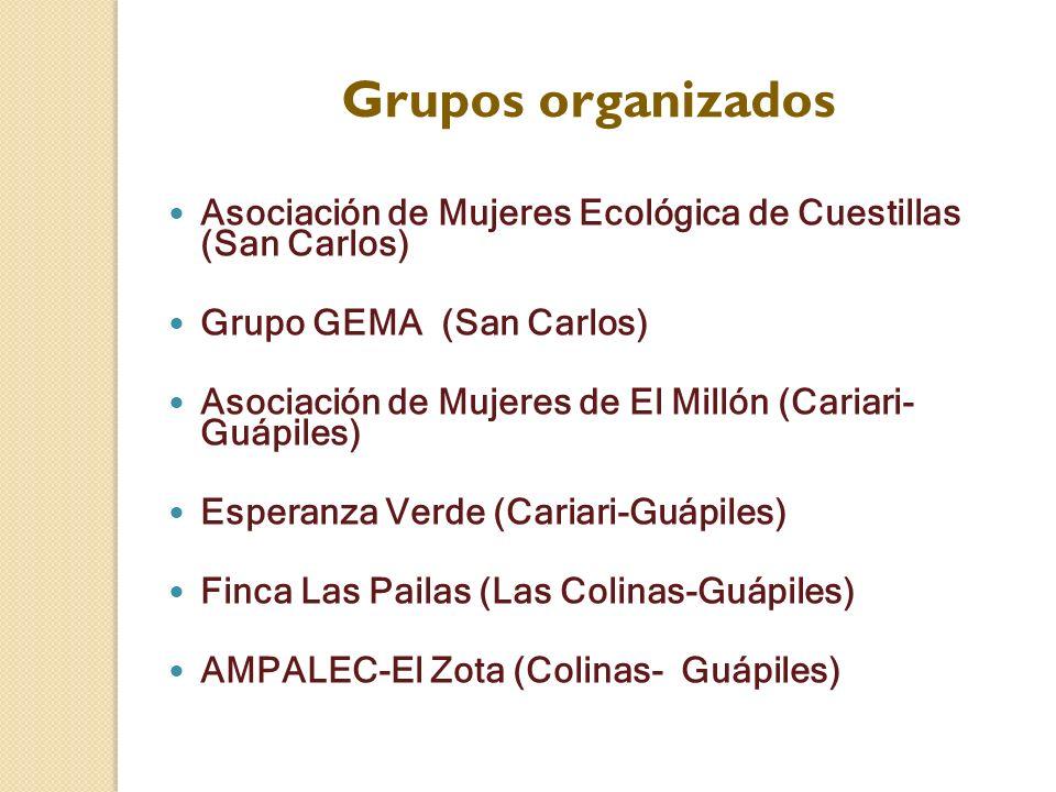 Grupos organizados Asociación de Mujeres Ecológica de Cuestillas (San Carlos) Grupo GEMA (San Carlos)
