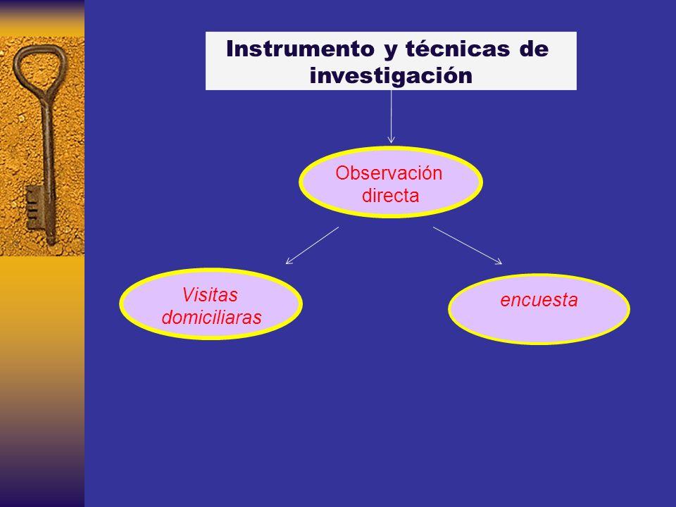 Instrumento y técnicas de