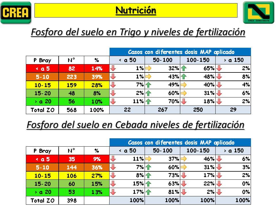 Fosforo del suelo en Trigo y niveles de fertilización