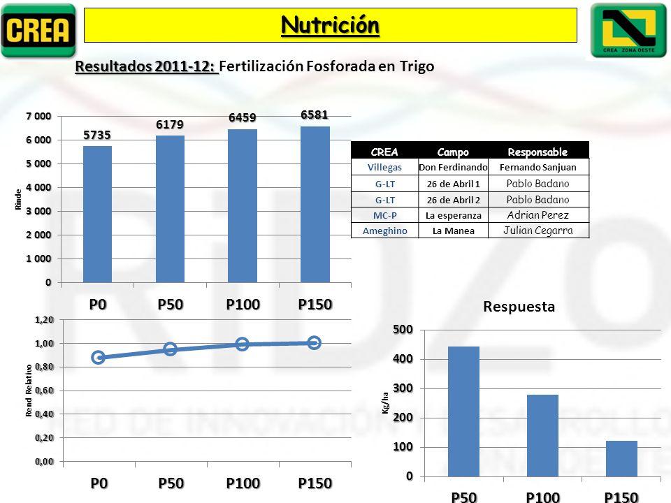 Nutrición Resultados 2011-12: Fertilización Fosforada en Trigo