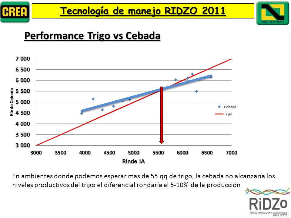 Performance Trigo vs Cebada