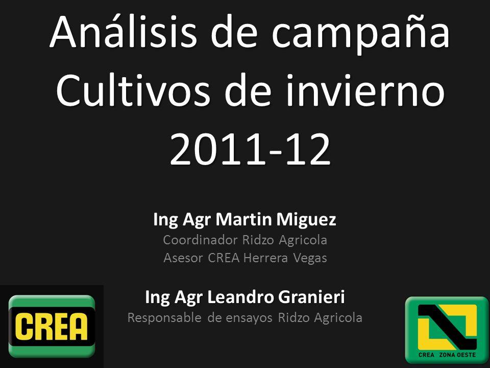 Análisis de campaña Cultivos de invierno 2011-12