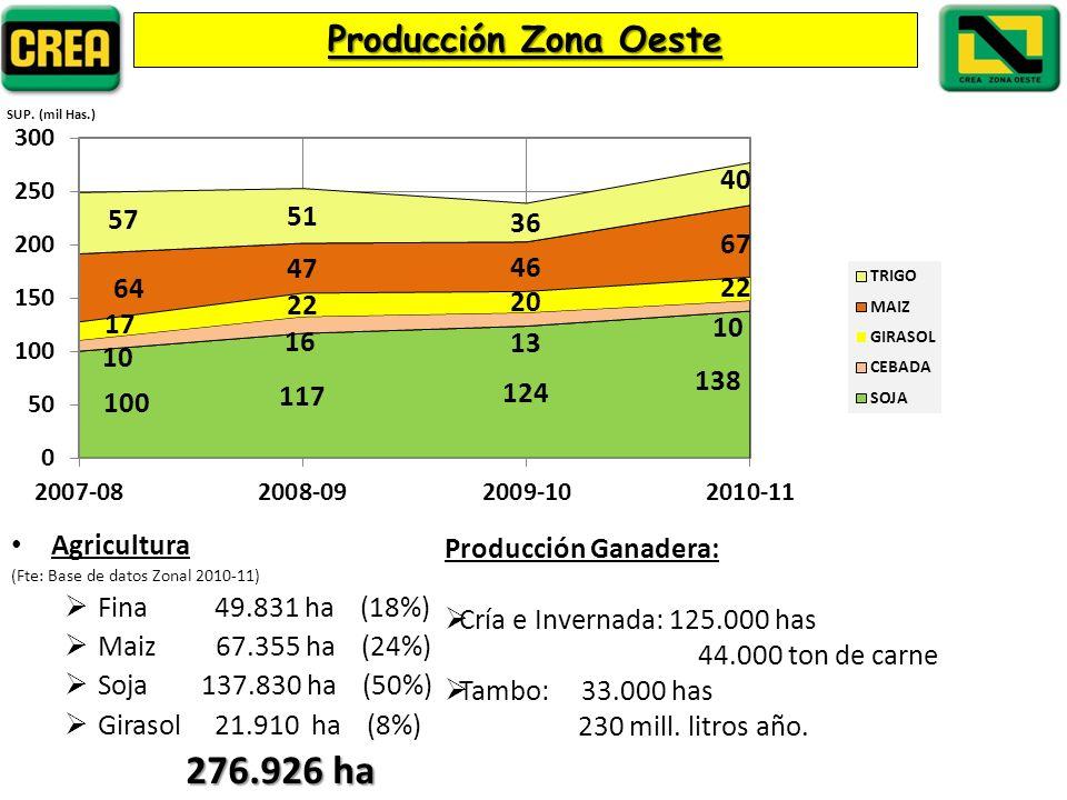 276.926 ha Producción Zona Oeste Agricultura Fina 49.831 ha (18%)