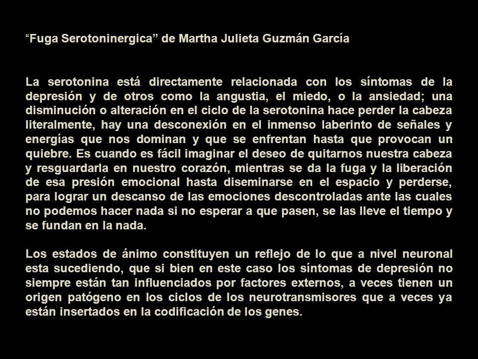 Fuga Serotoninergica de Martha Julieta Guzmán García