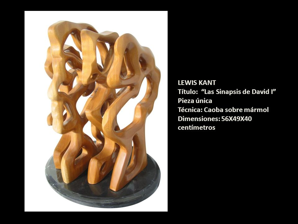 LEWIS KANTTítulo: Las Sinapsis de David I Pieza única.