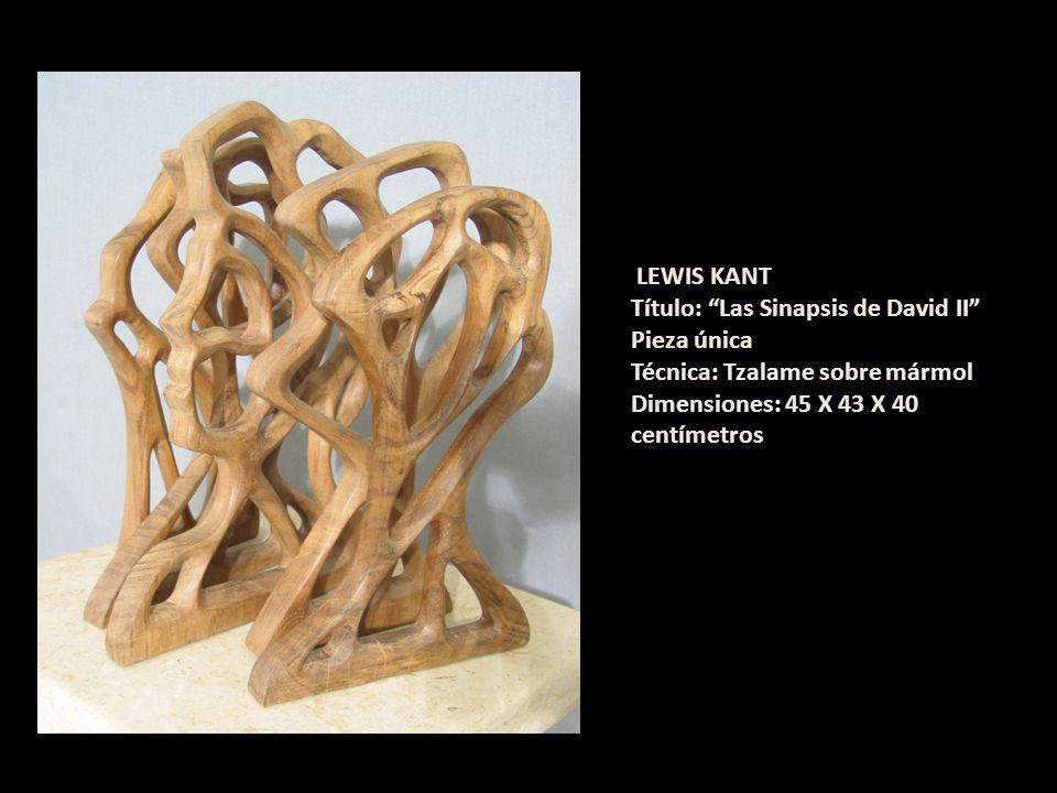 LEWIS KANT Título: Las Sinapsis de David II Pieza única.