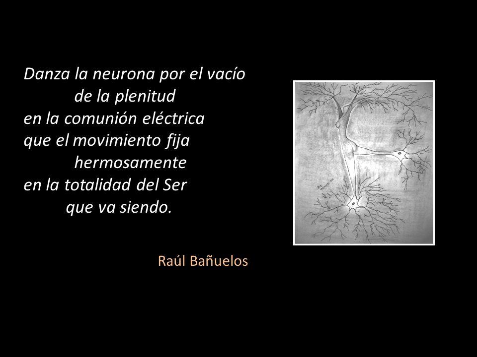 Danza la neurona por el vacío de la plenitud en la comunión eléctrica