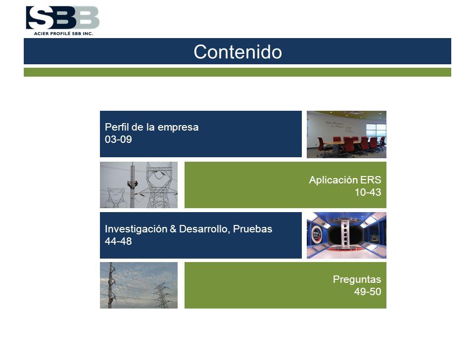 Contenido Perfil de la empresa 03-09 Aplicación ERS 10-43