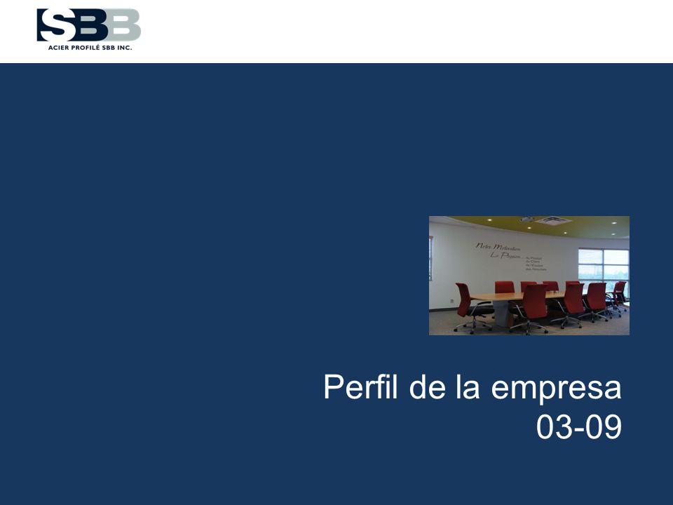 Perfil de la empresa 03-09