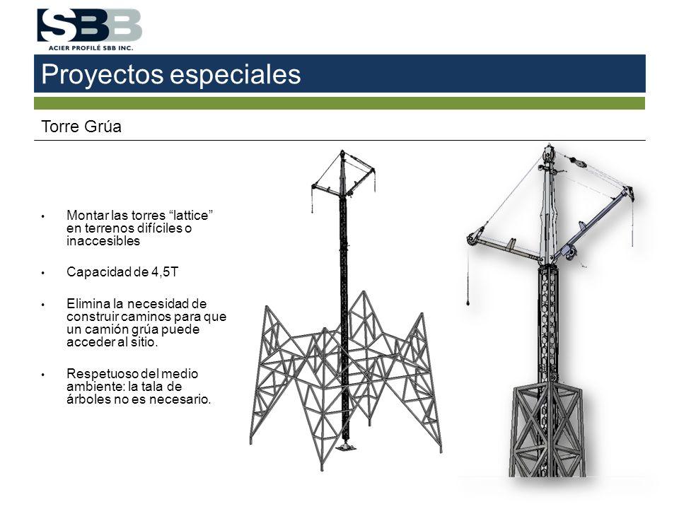 Proyectos especiales Torre Grúa