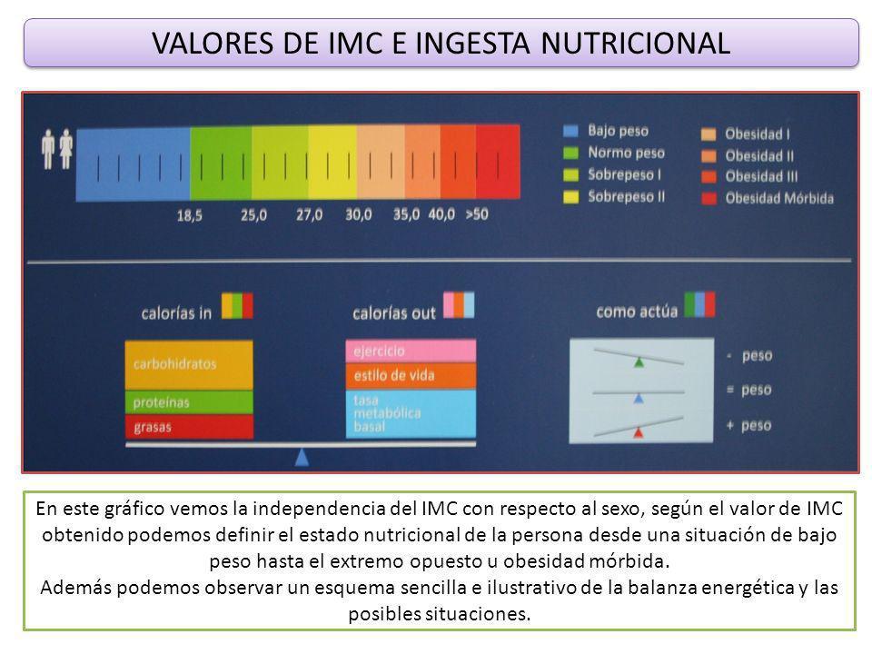 VALORES DE IMC E INGESTA NUTRICIONAL