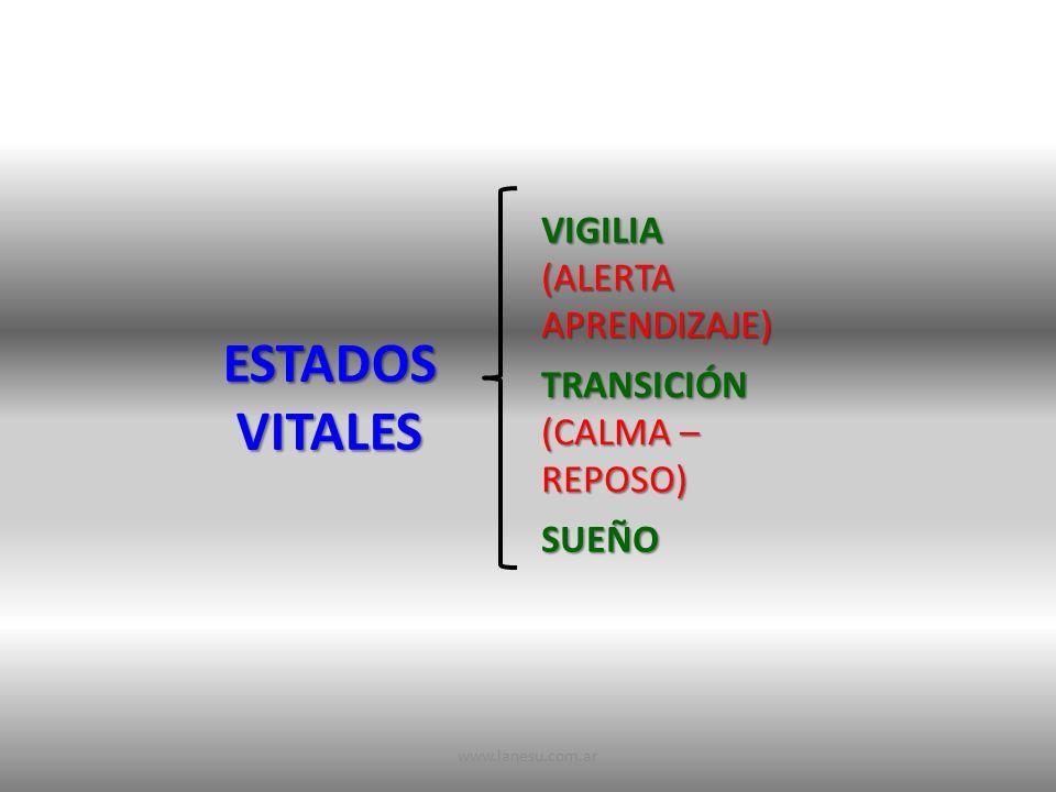 ESTADOS VITALES VIGILIA (ALERTA APRENDIZAJE) TRANSICIÓN