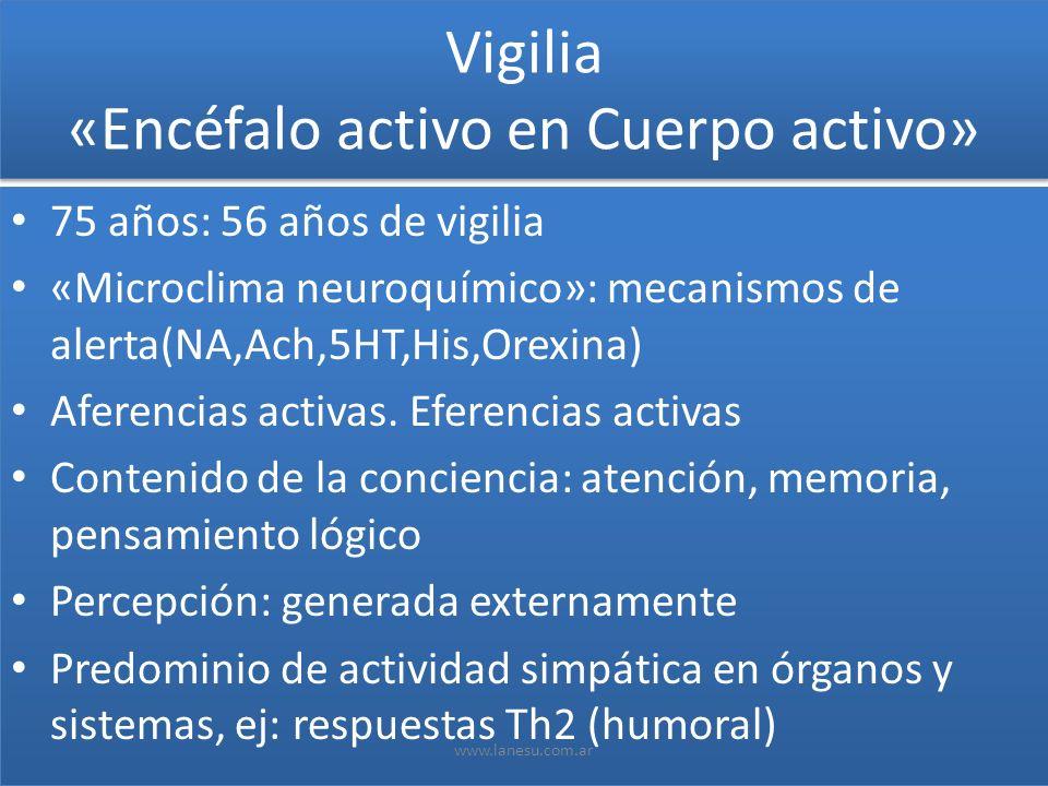 Vigilia «Encéfalo activo en Cuerpo activo»