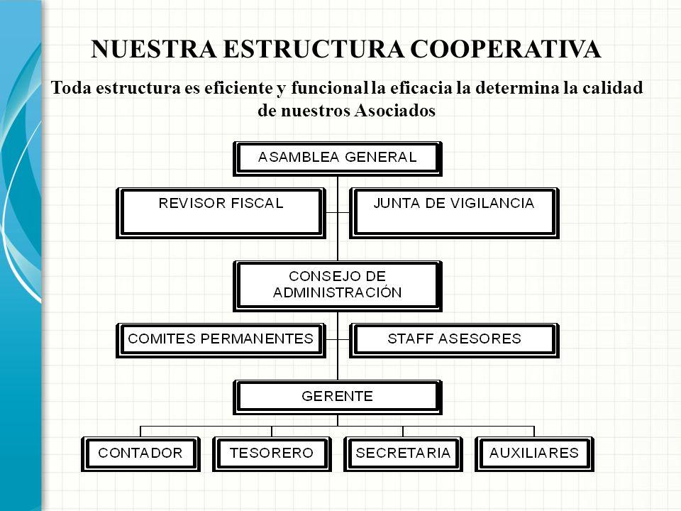 NUESTRA ESTRUCTURA COOPERATIVA