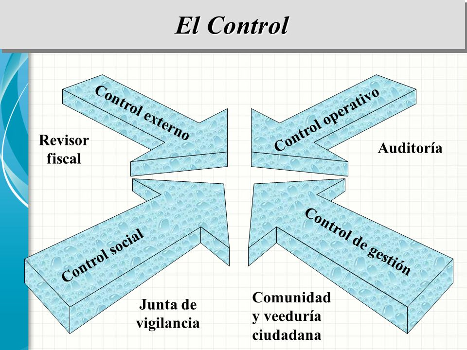 El Control Control externo Control operativo Revisor Auditoría fiscal
