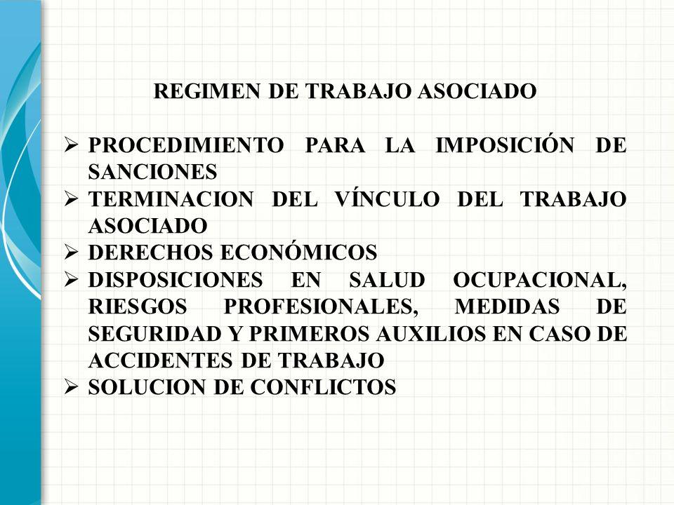 REGIMEN DE TRABAJO ASOCIADO