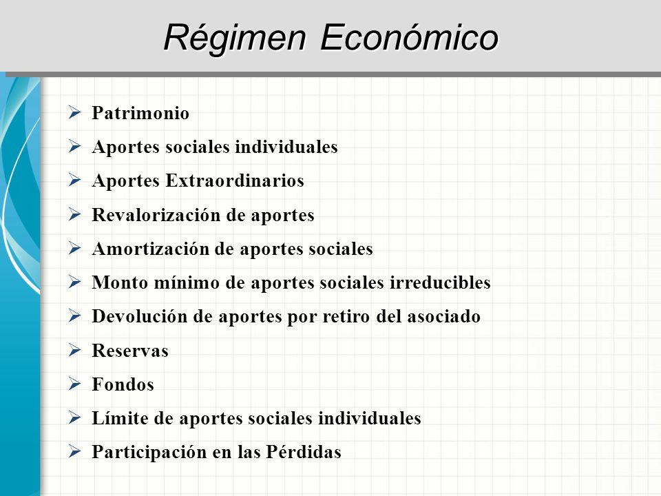 Régimen Económico Patrimonio Aportes sociales individuales