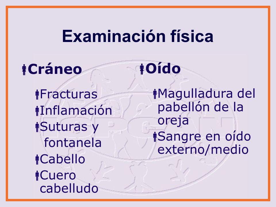Examinación física Cráneo Oído Fracturas
