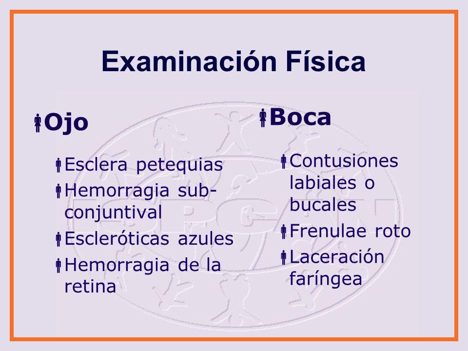 Examinación Física Boca Ojo Contusiones labiales o bucales