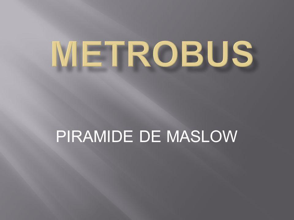 METROBUS PIRAMIDE DE MASLOW